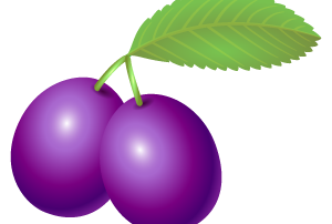 m_f_fruit90