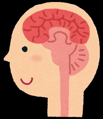 脳の調子を整えてくれる食べ物