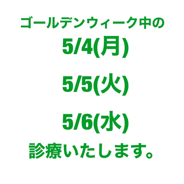 GW【大船/姿勢/健康】
