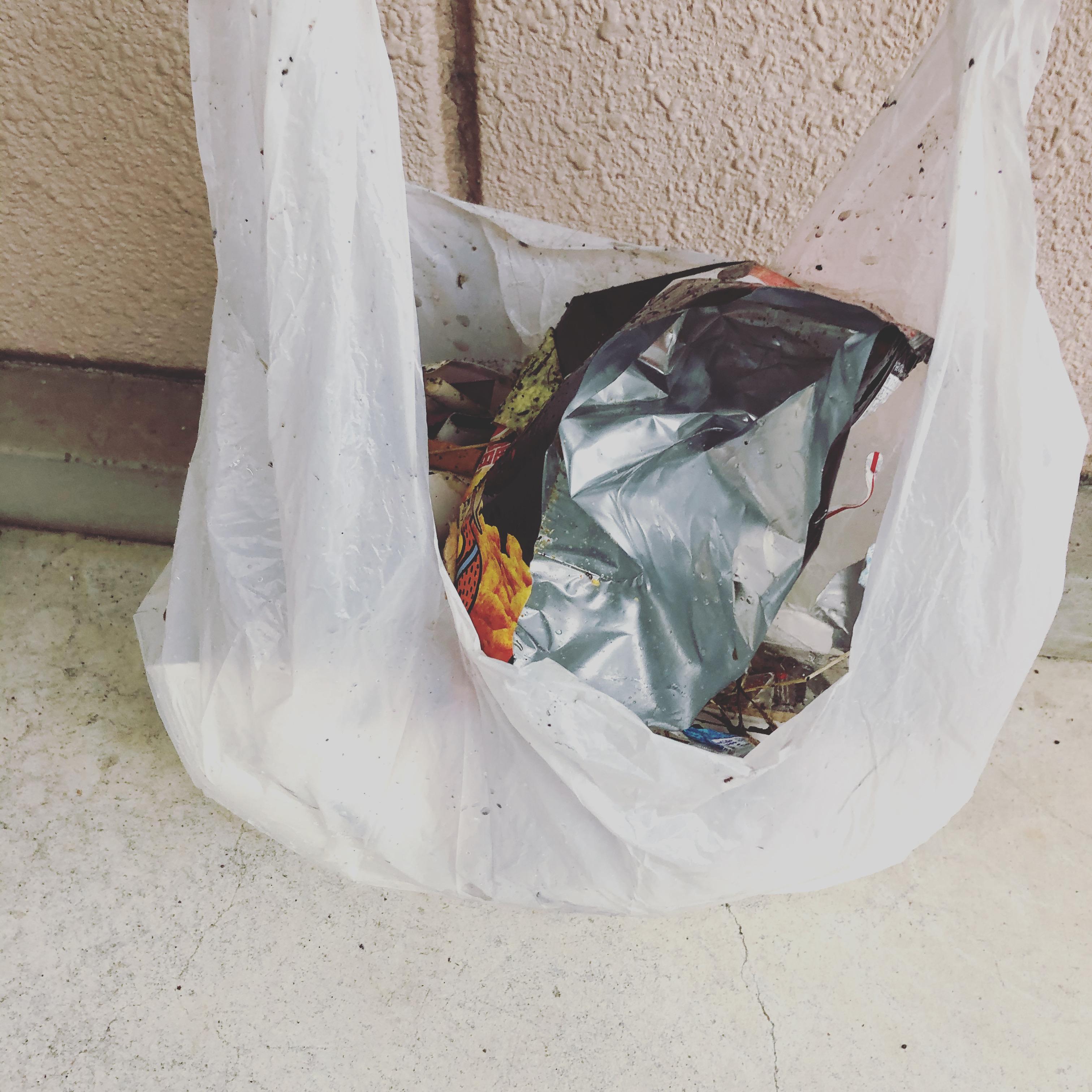 桜並木の清掃【ゴミ拾い/大船/整骨院】
